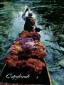Тетради «Госвами Букс». Священная река (36)